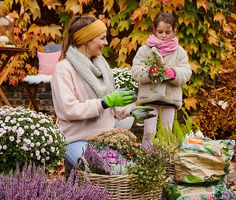 Zadbaj o ogród jesienią