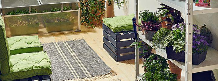 Domowy ogródek na balkonie