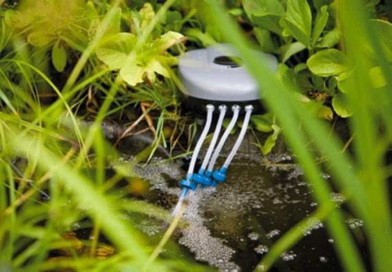 Oczko wodne - akcesoria