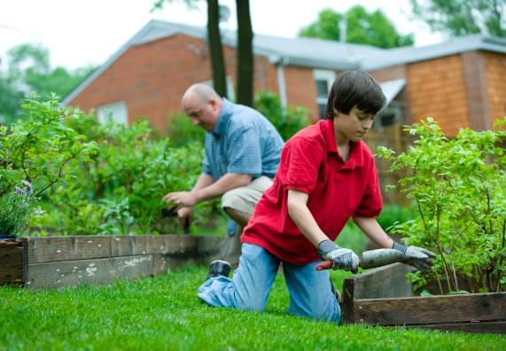 Kiedy i jak siać warzywa? Kalendarz ogrodnika OBI
