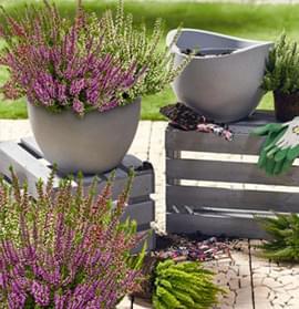Doniczki do sadzenia roślin