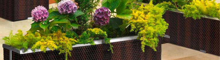 Zasady dobierania donic  do roślin domowych i ogrodowych