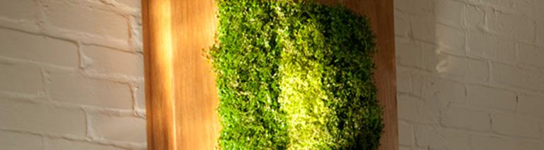 Zielony obraz z roślin na ścianę