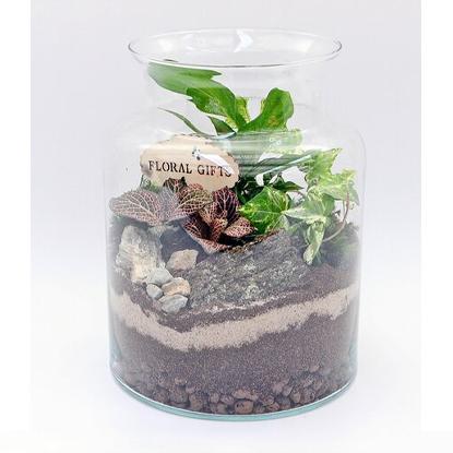 4Flower Rośliny zielone mix słój szklany PREMIUM